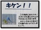 katsuonoeboshi3